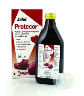 POWER HEALTH PROTECTOR SYROP 250ml